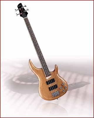 Đàn Guitar Electric Bass HB-340(WA)