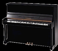 Đàn Upright Piano T121PE